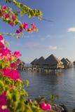 Overwater平房在Le Meridien塔希提岛旅馆, Pape'ete,塔希提岛,法属玻里尼西亚 库存照片
