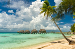 Overwater bungalows in a beach in Tikehau. Tahiti royalty free stock photo