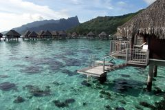 Overwater Bungalows in Moorea Royalty Free Stock Photos