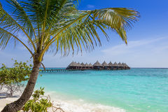 Overwater villas and bridge in tropical ocean Royalty Free Stock Photo