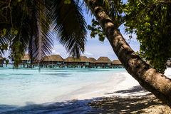Overwater Villas with palm trees and a beach in the Maldives Stock Photo