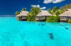 Overwater wille w lagunie Moorea wyspa Fotografia Royalty Free