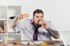 overweight businessman eating hotdogs at workplace stock photo