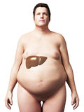 Overweight man - liver Royalty Free Stock Photo