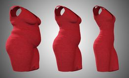 Overweight obese female dress outfit vs slim fit healthy body. Conceptual fat overweight obese female dress outfit vs slim fit healthy body after weight loss or Royalty Free Stock Photos