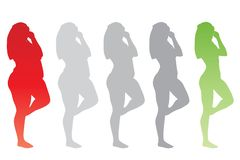 Overweight obese female vs slim fit healthy body. Conceptual fat overweight obese female vs slim fit healthy body after weight loss or diet with muscles thin royalty free illustration