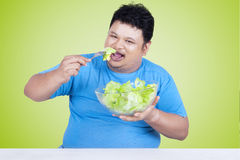 Overweight person enjoy fresh salad Stock Photography