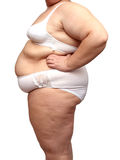 Overweight woman body in underwear. Isolated on white Royalty Free Stock Photo
