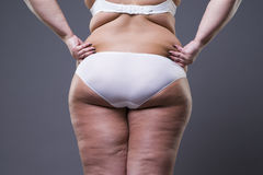 Overweight woman with fat legs and buttocks, obesity female body Royalty Free Stock Images
