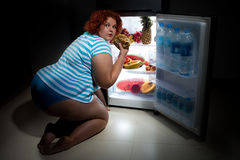 Overweight woman with  refrigerator Stock Photos