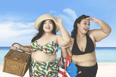 Overweight women looking something on beach. Two overweight women looking something on the beach while carrying picnic basket and beach items Royalty Free Stock Image
