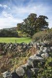 Overweldigend Autumn Fall-landschapsbeeld van breed platteland in Meer Royalty-vrije Stock Foto's