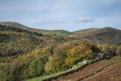 Overweldigend Autumn Fall-landschapsbeeld van breed platteland in Meer Royalty-vrije Stock Foto