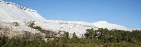 Overweldigend behandeld het plattelandsverstand van het de Winter panoramisch landschap sneeuw Stock Fotografie