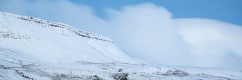 Overweldigend behandeld het plattelandsverstand van het de Winter panoramisch landschap sneeuw royalty-vrije stock afbeeldingen
