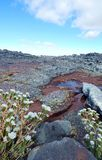 Overweldigend Cedarberg-Berglandschap Royalty-vrije Stock Afbeeldingen