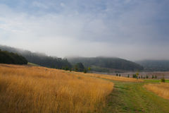 Overweldigend de lentelandschap in de mist Royalty-vrije Stock Foto's