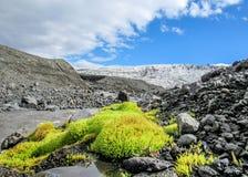 Overweldigend de zomerlandschap van Kverkfjoll met groen Ijslands mos, snel lopende rivier, zwarte vulkanische rotsen en Vatnajok stock foto's