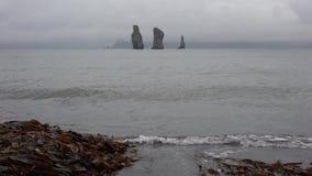 Overweldigend die het Schiereilandzeegezicht van Kamchatka - strand van zwart vulkanisch zand wordt gemaakt stock video