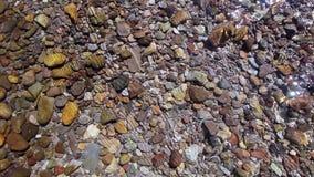 Overweldigend & Kleurrijk Rocky Mountain Stream In Colorado stock video