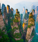 Overweldigend landschap, Zhangjiajie China Stock Afbeelding