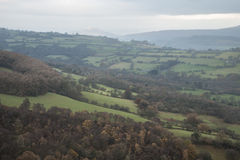 Overweldigend landschapsbeeld van verlaten die steengroeve over door natur wordt genomen Stock Afbeelding