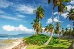 Overweldigend mooi schilderachtig Caraïbisch landschap, Dominicaanse Republiek stock foto