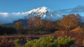 Overweldigend vulkanisch landschap, mening van rotsachtige kegelvulkaan, geeloranje bos stock footage