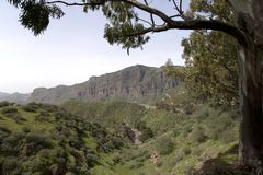 Overweldigende aard in de hooglanden Cruz de Tejeda in Gran Canaria, Canarische Eilanden onder Spaanse vlag royalty-vrije stock afbeelding