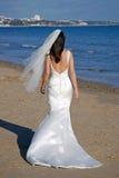 Overweldigende bruid Stock Afbeeldingen