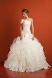 Overweldigende klassieke bruid Stock Afbeelding