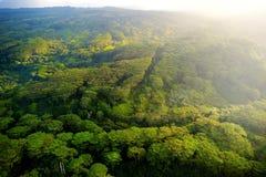 Overweldigende luchtmening van spectaculaire wildernissen, Kauai stock afbeelding