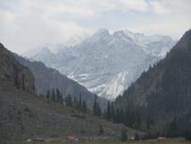 Overweldigende mening van Himalayagebergte stock fotografie
