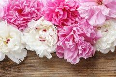 Overweldigende roze pioenen, gele anjers en rozen stock foto
