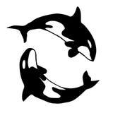 Overweldigende walvissen Silhouet van dansende zoogdieren vector illustratie