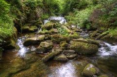 Overweldigende waterval die over rotsen in bos stroomt Royalty-vrije Stock Afbeeldingen