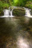 Overweldigende waterval die over rotsen in bos stroomt Stock Foto