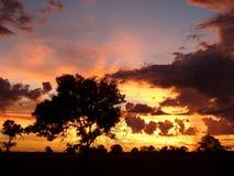 Overweldigende Zonsondergang Royalty-vrije Stock Afbeelding