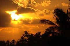 Overweldigende zonsondergang in Key West stock afbeelding