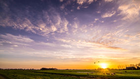 Overweldigende zonstijging over een Nederlandse weide op een gouden de winterochtend Stock Afbeelding