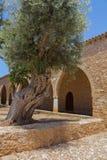 Overwelfde galerij in het Klooster van Ayia Napa, Cyprus Stock Foto