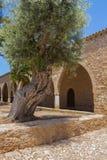 Overwelfde galerij in het Klooster van Ayia Napa, Cyprus Stock Foto's