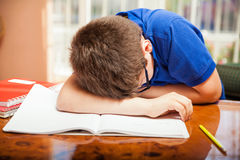 overwhelmed домашняя работа Стоковая Фотография RF