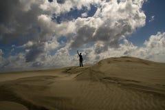 Overwinning in de woestijn stock foto
