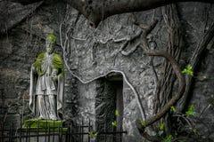 Overwoekerd monument, Wenen, Oostenrijk Stock Afbeelding
