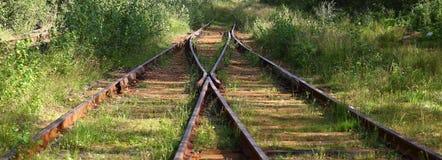 Overwoekerde oude spoorweg royalty-vrije stock afbeelding