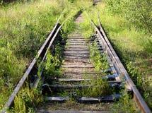 Overwoekerde oude spoorweg royalty-vrije stock foto