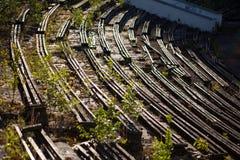 Overwoekerde oude stadionzetels Stock Foto's