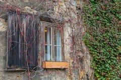 Overwoekerde oude voorgevel met oud venster met blind stock afbeeldingen