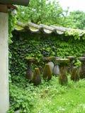 Overwoekerde tuin, Kroatië Stock Foto